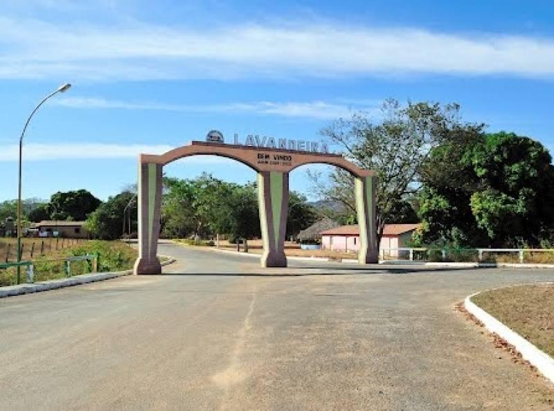 Lavandeira Tocantins fonte: jtinoticias.com.br